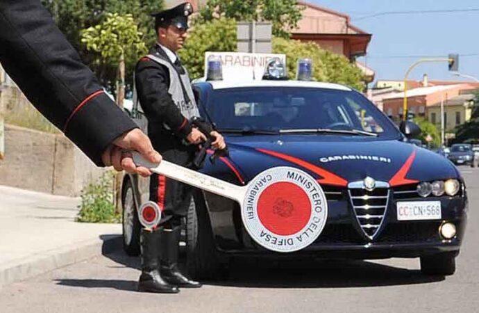 San Vito Lo Capo, i carabinieri denunciano il proprietario di un cane