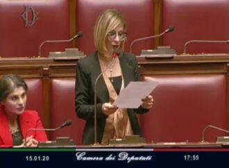 VIDEO – Enzo e Livio Monaco ricordati ieri alla Camera dei deputati