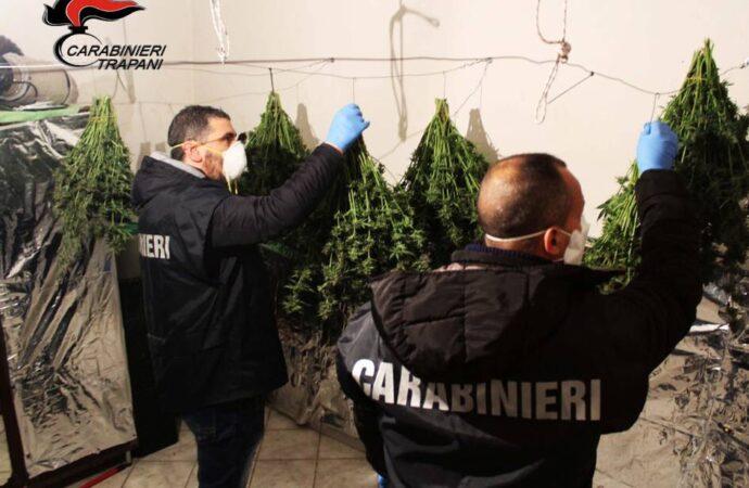 Coltivava marijuana in casa, arrestato dai carabinieri di Marsala