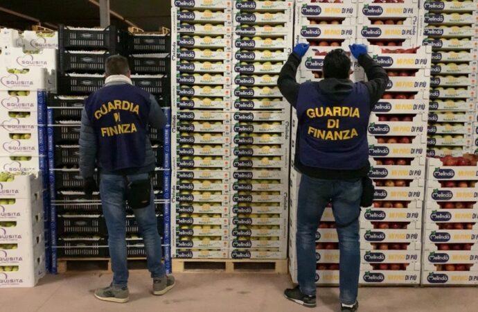 La Guardia di finanza sequestra un capannone abusivo per la vendita all' ingrosso di prodotti ortofrutticoli