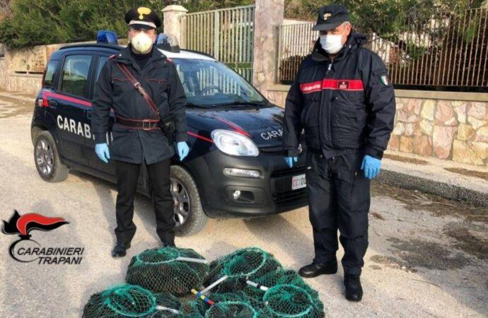 Trapani, due pescatori di ricci multati dai carabinieri