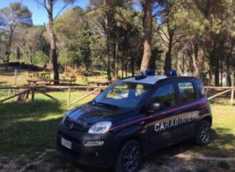 Grigliata abusiva a Vita, denunciato dai carabinieri
