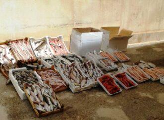 Blitz della polizia municipale in piazzetta dello Scalo, sequestrati 122 chili di pesce a Mazara