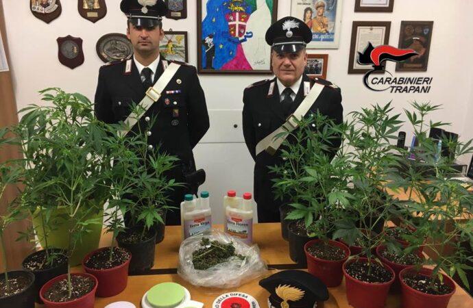 Un marsalese arrestato dai carabinieri per coltivazione di marijuana