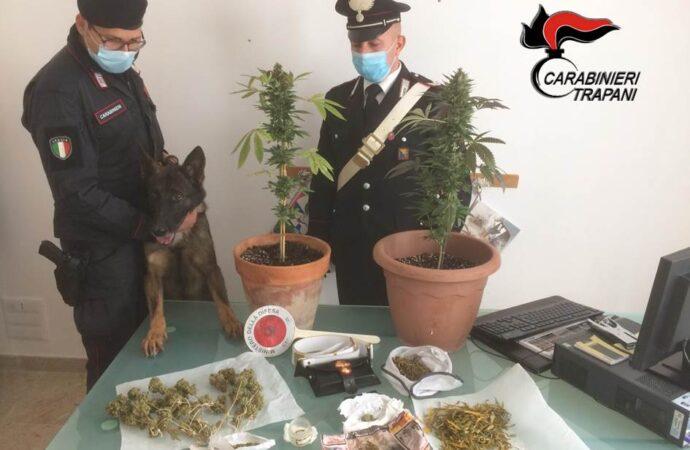 Controlli dei carabinieri, scattano due denunce a Mazara e a Vita