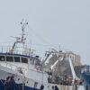 """Mazara: Quinci """"dopo la liberazione dei pescatori  si apre una nuova sfida con l'Unione Europea"""""""