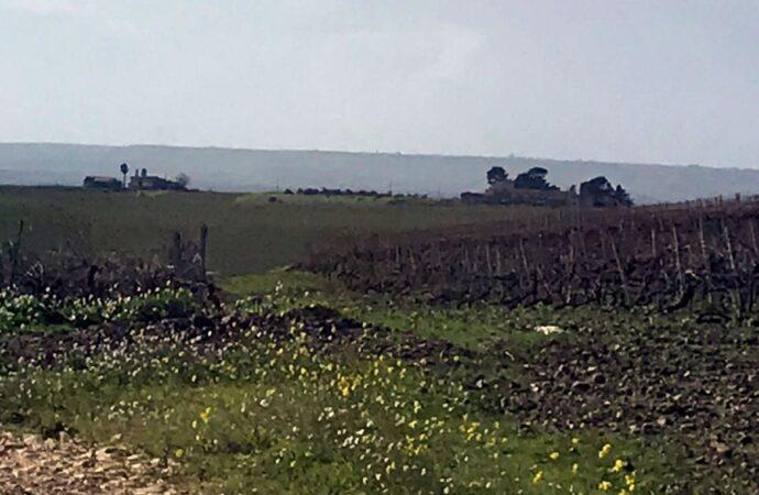 Rifiuti radioattivi nel Trapanese, sopralluogo da parte del gruppo studio Cnapi della Regione Siciliana