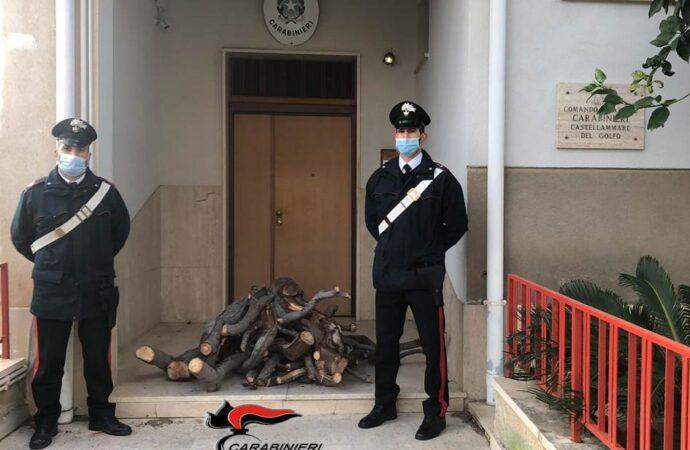 Taglia legna da un albero per il  proprio camino, arrestato dai carabinieri di Castellammare del Golfo