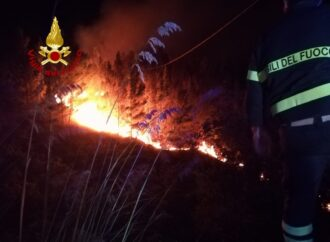 Alcamo, i dettagli dell'incendio sul monte Bonifato