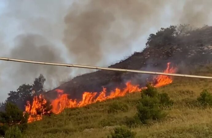 Alcamo, un incendio ha interessato monte Bonifato