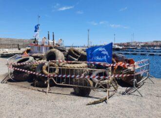 Pantelleria, recuperati centinaia di pneumatici dai fondali del porto