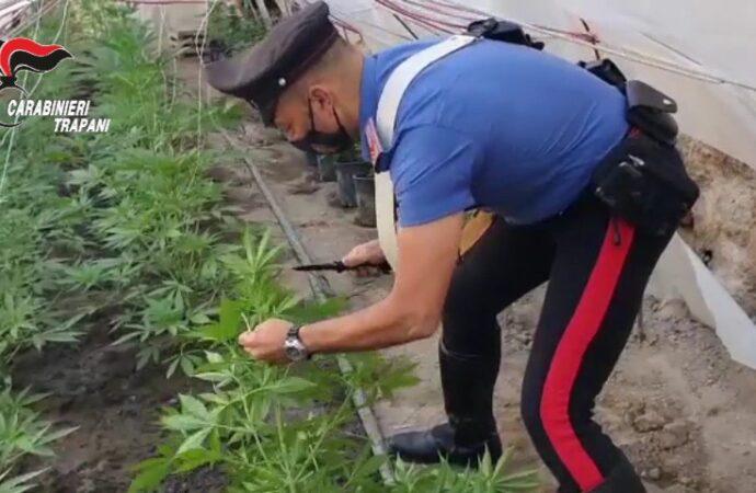 Marsala, un 19enne arrestato dai carabinieri